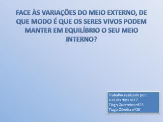Trabalho realizado por: Luís Martins nº17 Tiago Guerreiro nº25 Tiago Oliveira nº26