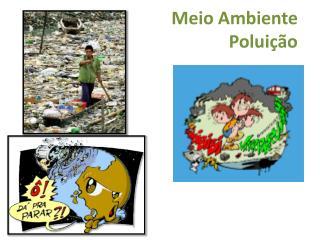 Meio Ambiente   Polui��o