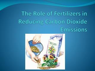 The Role of Fertilizers in Reducing Carbon Dioxide Emissions