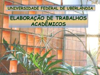 UNIVERSIDADE FEDERAL DE UBERLÂNDIA