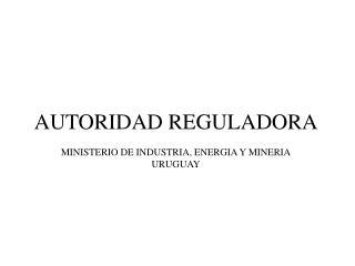 AUTORIDAD REGULADORA MINISTERIO DE INDUSTRIA, ENERGIA Y MINERIA URUGUAY