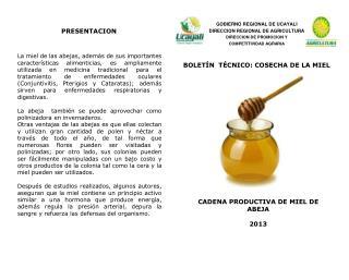CADENA PRODUCTIVA DE MIEL DE ABEJA 2013