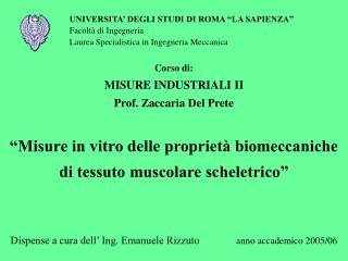 """UNIVERSITA' DEGLI STUDI DI ROMA """"LA SAPIENZA"""" Facoltà di Ingegneria"""