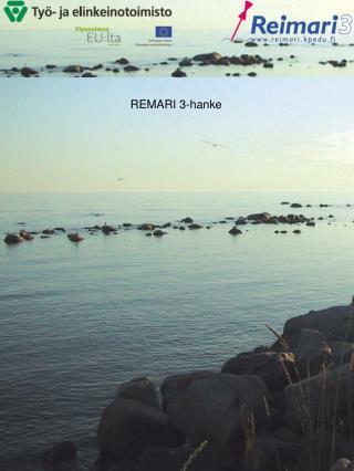 REMARI 3-hanke
