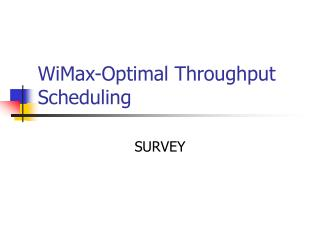 WiMax-Optimal Throughput Scheduling