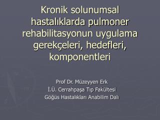 Prof Dr. Müzeyyen Erk İ.Ü. Cerrahpaşa Tıp Fakültesi Göğüs Hastalıkları Anabilim Dalı