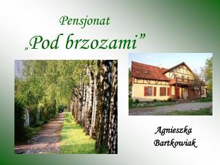 "Pensjonat  "" Pod brzozami"""
