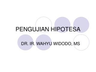 PENGUJIAN HIPOTESA