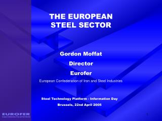 THE EUROPEAN  STEEL SECTOR