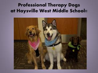 Professional Therapy Dogs  at Haysville West Middle School