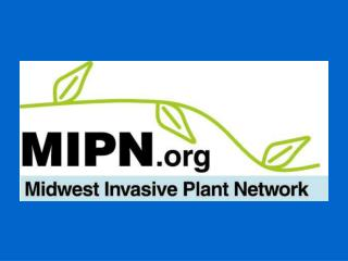 MIPN Board of Directors