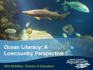 Ocean Literacy: A Lowcountry Perspective