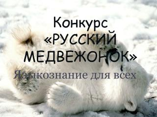 Конкурс  «РУССКИЙ МЕДВЕЖОНОК»