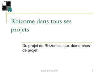 Rhizome dans tous ses projets