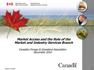 Market Access and the Role of the Market and Industry Services Branch