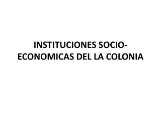 INSTITUCIONES SOCIO-ECONOMICAS DEL LA COLONIA