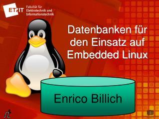 Datenbanken für den Einsatz auf Embedded Linux