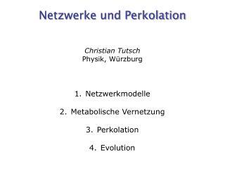 Netzwerke und Perkolation