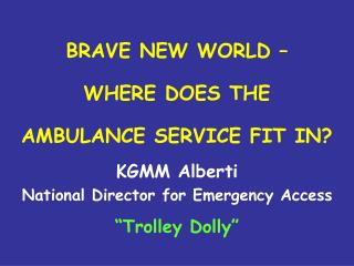 BRAVE NEW WORLD �  WHERE DOES THE  AMBULANCE SERVICE FIT IN?