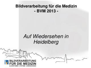 Bildverarbeitung für die Medizin  - BVM 2013 -
