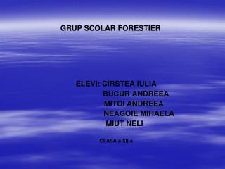 GRUP SCOLAR FORESTIER