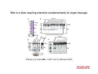 M Reuter  et al .  Nature 000 ,  1 - 4  (2011) doi:10.1038/nature10672