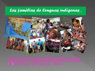 Las familias de lenguas indígenas .