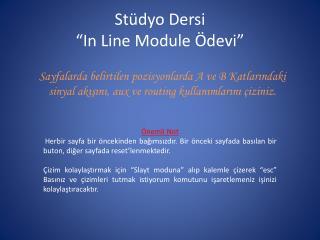 """Stüdyo Dersi  """"In Line Module Ödevi"""""""