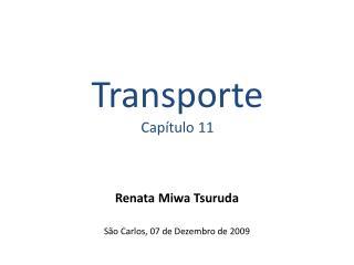 Transporte Capítulo 11