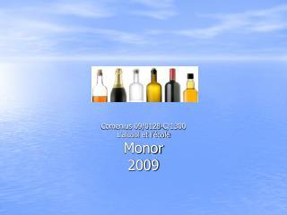 Comenius 09/0128-C/1300 L'alcool et l'école Monor 2009