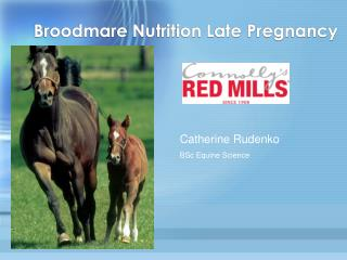 Broodmare Nutrition Late Pregnancy