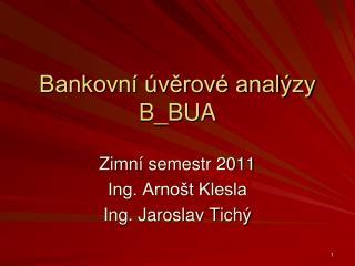 Bankovní úvěrové analýzy B_BUA