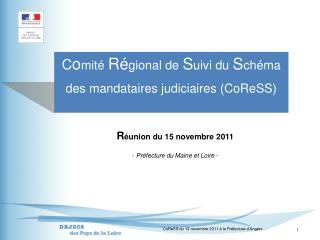 C o mité  Ré gional de  S uivi du  S chéma des mandataires judiciaires (CoReSS)