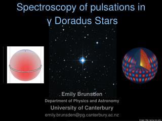 Spectroscopy of pulsations in γ  Doradus Stars