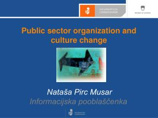 Public sector organization and culture change