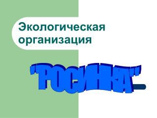 Экологическая  организация