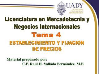 Licenciatura en Mercadotecnia y Negocios Internacionales