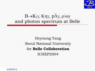 B K 1 g, Khg,  p Lg, r/wg  and photon spectrum at Belle