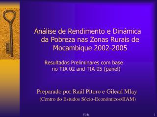 Preparado por Raúl Pitoro e Gilead Mlay (Centro do Estudos Sócio-Económicos/IIAM)