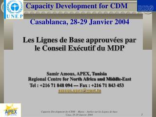 Capacity Development for CDM Casablanca, 28-29 Janvier 2004