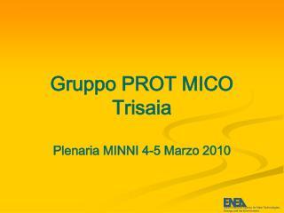 Gruppo PROT MICO Trisaia Plenaria MINNI 4-5 Marzo 2010