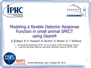 Modeling a flexible Detector Response Function in small animal SPECT  using Geant4