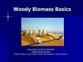 Woody Biomass Basics