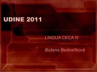 UDINE 2011