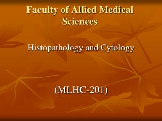 Faculty of Allied Medical Sciences