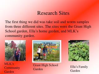 MLK's Community Garden