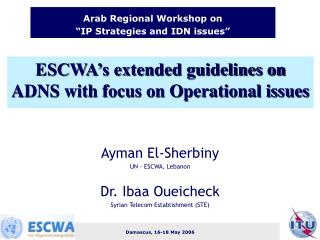 ESCWA's extended guidelines on ADNS with focus on Operational issues
