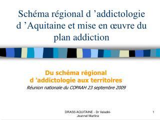 Sch ma r gional d  addictologie d  Aquitaine et mise en  uvre du plan addiction