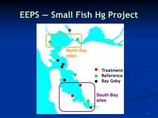 EEPS ― Small Fish Hg Project