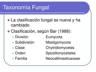 Taxonomía Fungal